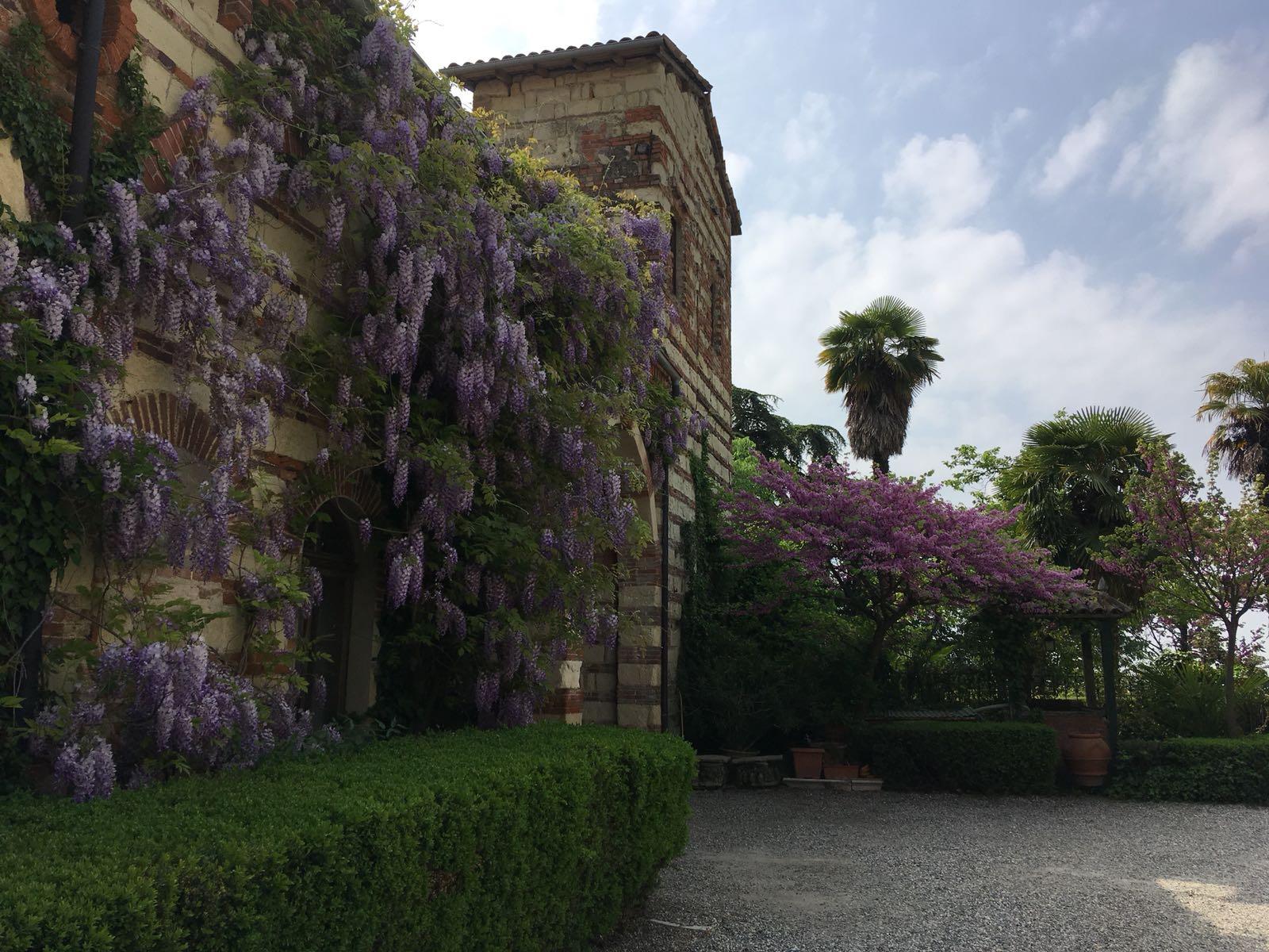 Castello di Frassinello 7