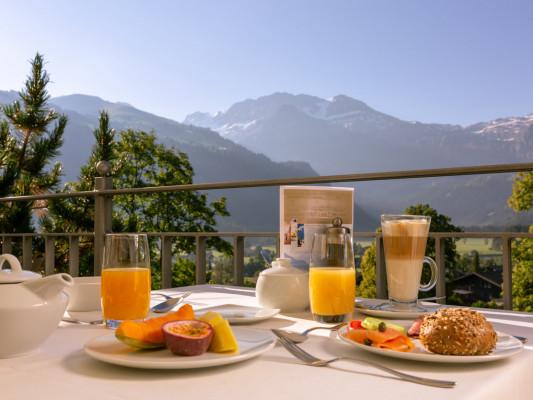 Lenkerhof gourmet spa resort 3