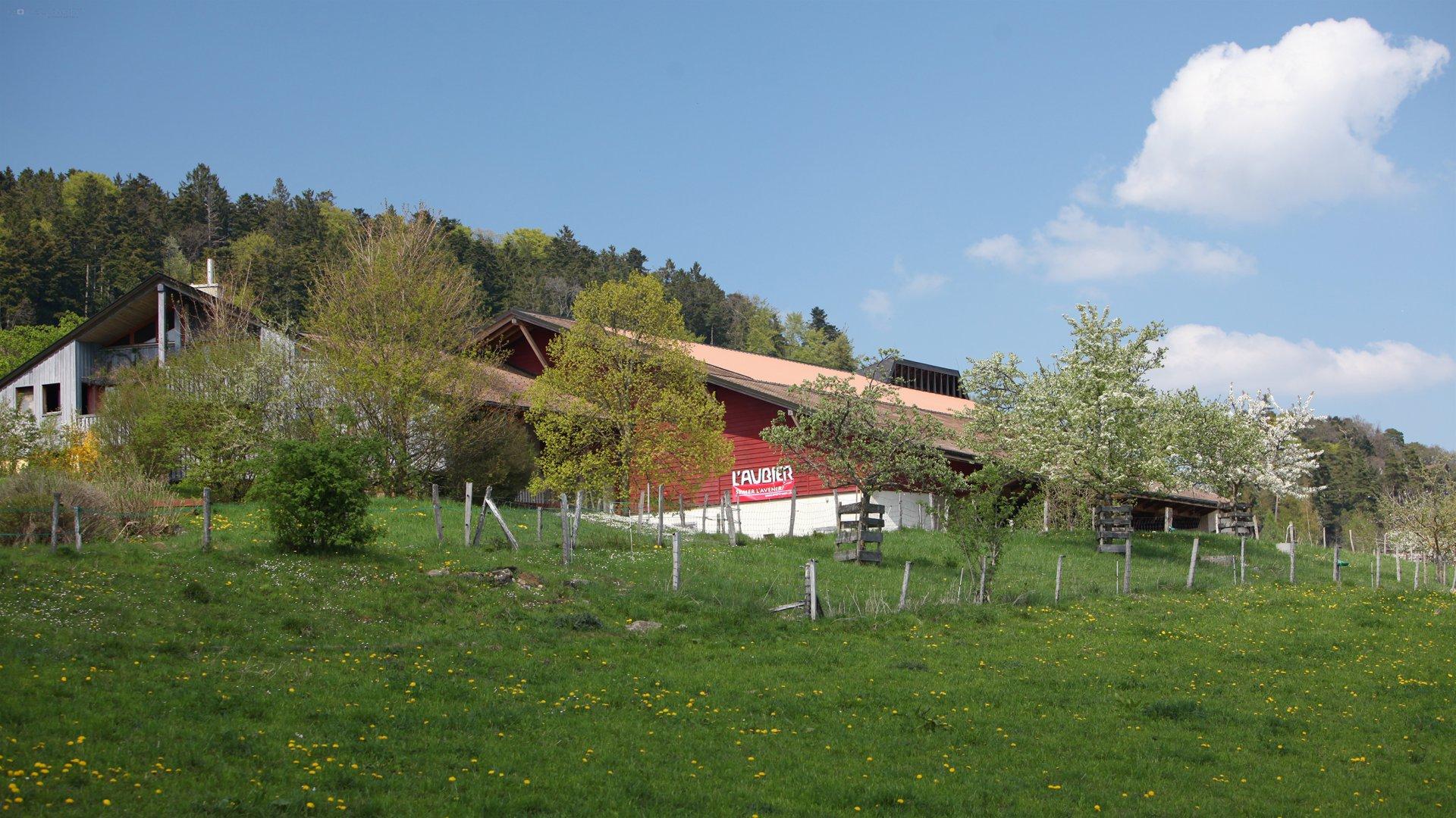 EcoHotel L'Aubier 7