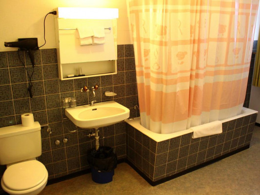 Hotel Rheinfall GmbH Single room 2