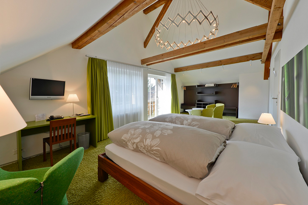 Hotel Linde Fislisbach 9