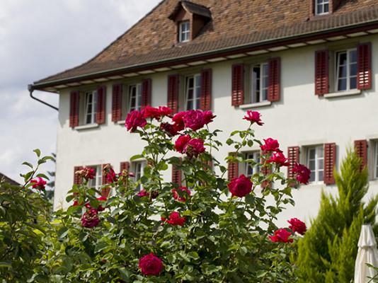 Kloster Dornach 3