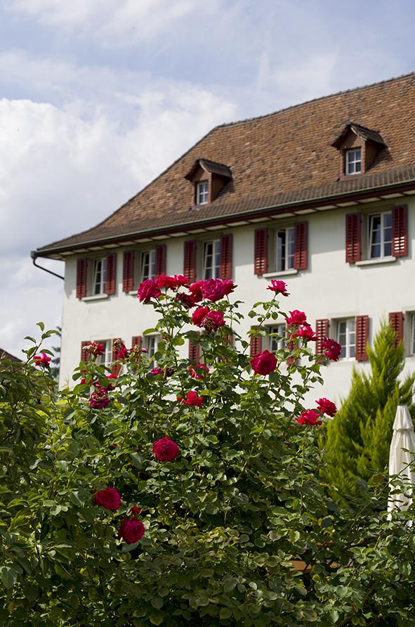 Kloster Dornach 7