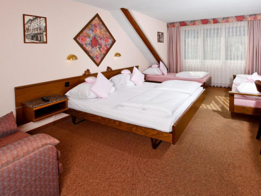 BASLERTOR Summerpool Hotel Four-bed room 0
