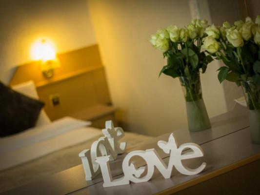 Hotel Bristol Single room 1