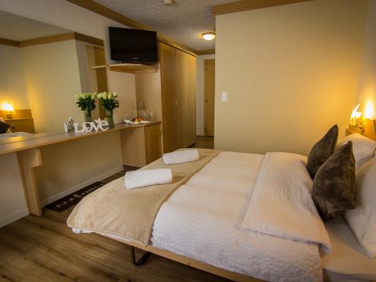 Hotel Bristol Double room 0