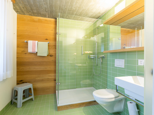 Kloster Ilanz - Haus der Begegnung Deluxe double room with shower / WC 1