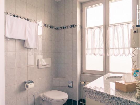 Hotel Hofmatt Camera singola standard 1