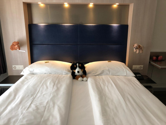 Hotel Alexander Family room 4