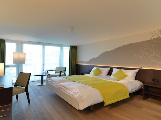 Hotel Artos Interlaken Twin room 6