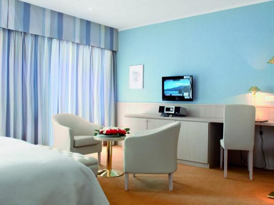 Hotel Ascona Double room standard 0