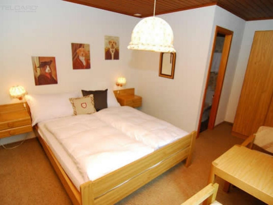 Hotel & Landgasthof Rothorn Chambre simple 0
