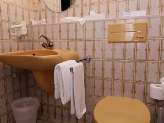 Hotel Eremitage Double room single use 2
