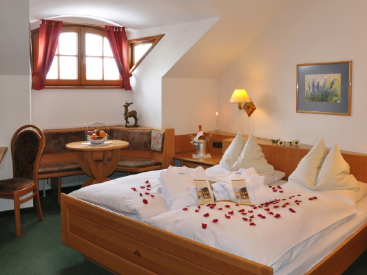 Hotel zum goldenen Hirschen Double room for single use 1