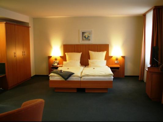 Blauer Wolf Double room Standard 3