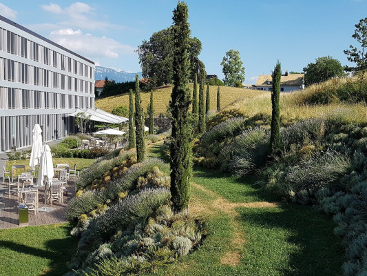 MODERN TIMES HOTEL Single Modern Garden View 4
