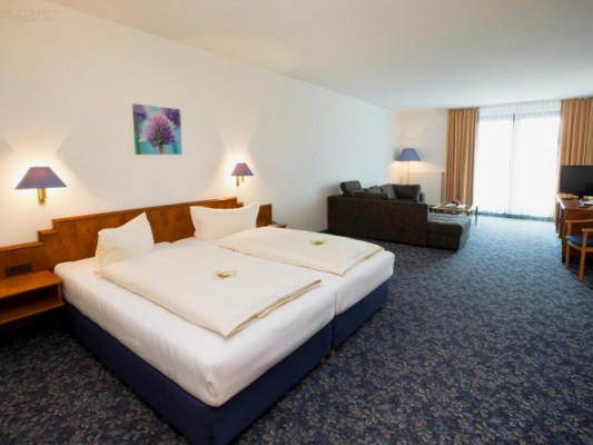 Alpina Lodge Hotel Oberwiesenthal Double room Comfort 0