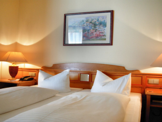 The Royal Inn Regent Hotel Double room Comfort 6