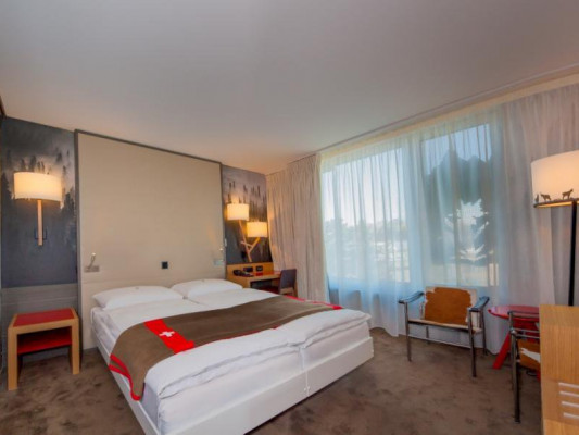Agora Swiss Night by Fassbind Superior double room 0