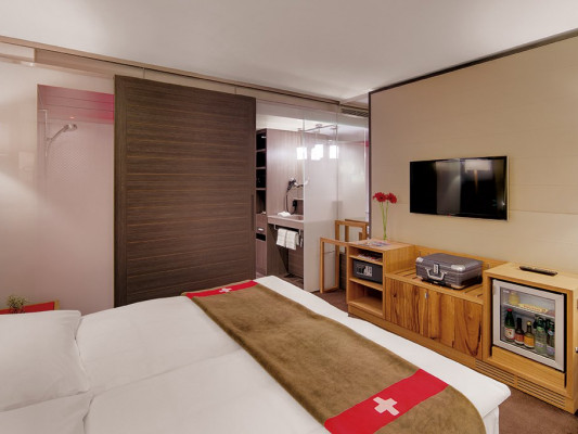 Agora Swiss Night by Fassbind Superior double room 1