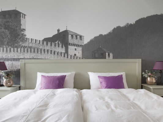 Boutique & Business Hotel La Tureta Bellinzona Room Double Style 1