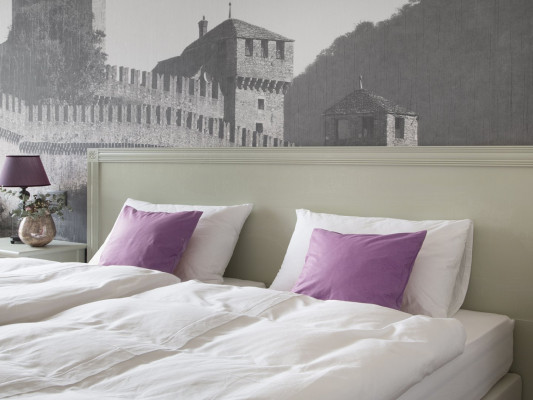 Boutique & Business Hotel La Tureta Bellinzona Room Double Style 2