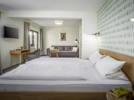 Hotel Sonnenhof Double room Superior 0