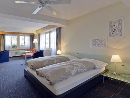 Hotel Linde Fislisbach Double room 1